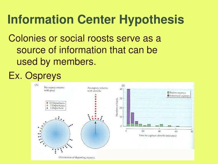 Information Center Hypothesis