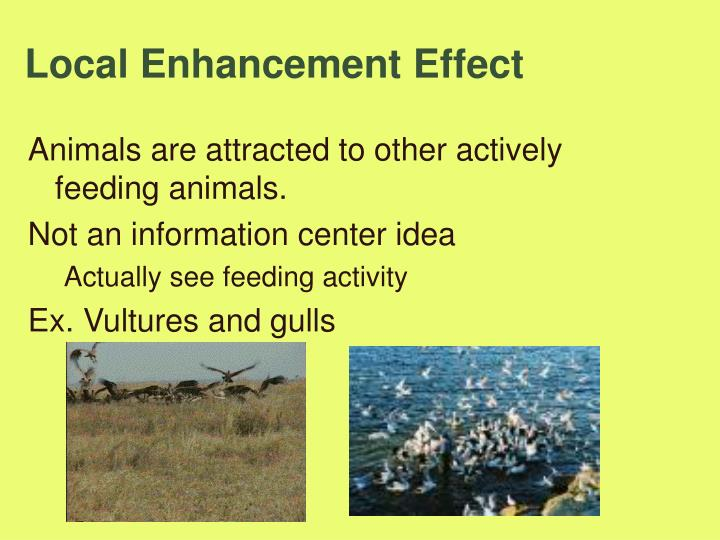 Local Enhancement Effect