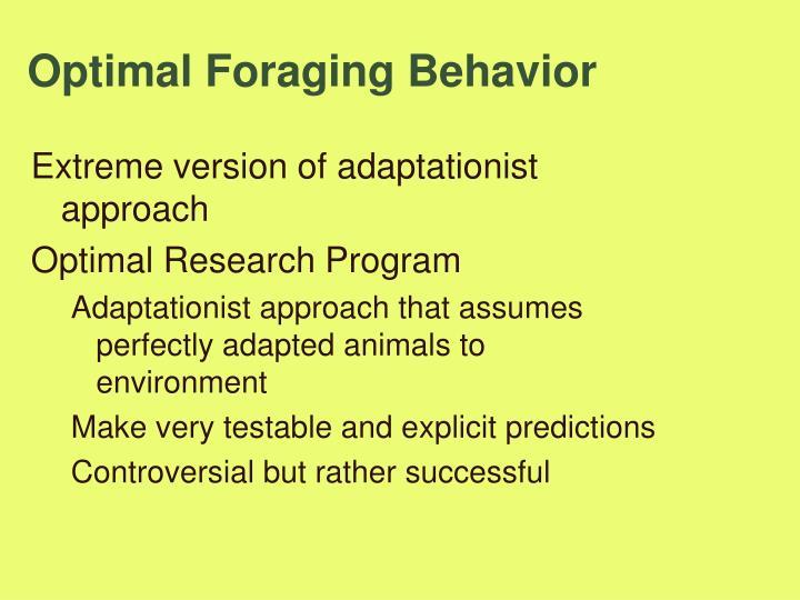 Optimal Foraging Behavior
