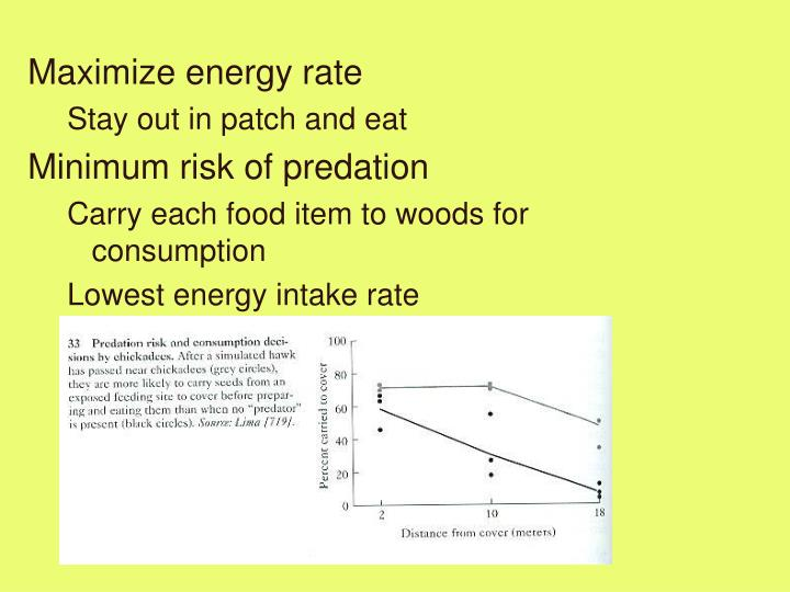 Maximize energy rate
