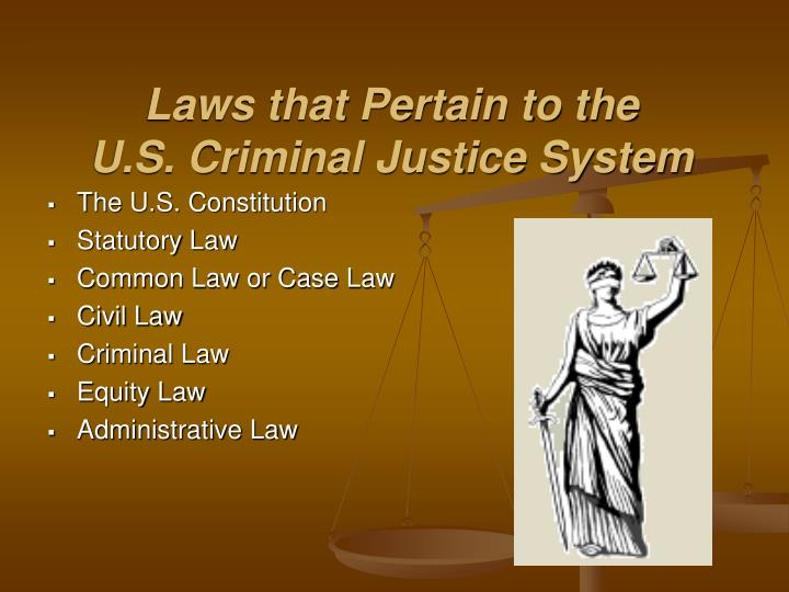 public policy pertaining to the criminal justice system State and federal government policies for criminal justice system state and federal government policies for criminal justice system difference between state and federal government in the implementation of criminal justice system policy.