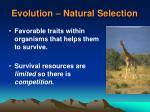 evolution natural selection