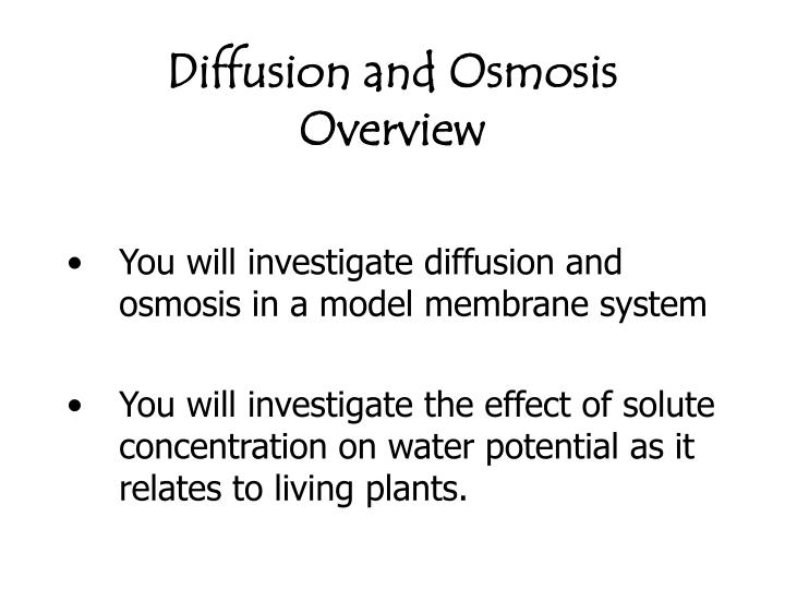 to find out the effect of solute concentration on osmosis in potatoes When carrying out the experiment i used a range of 0, 02, 04, 06, 08 and 1 molar solution to see the effect of osmosis in the potato pieces in the future i would like to have more varied range of the concentration of the solution in order to produce a more varied range of results ie 0, 01, 02, 03.