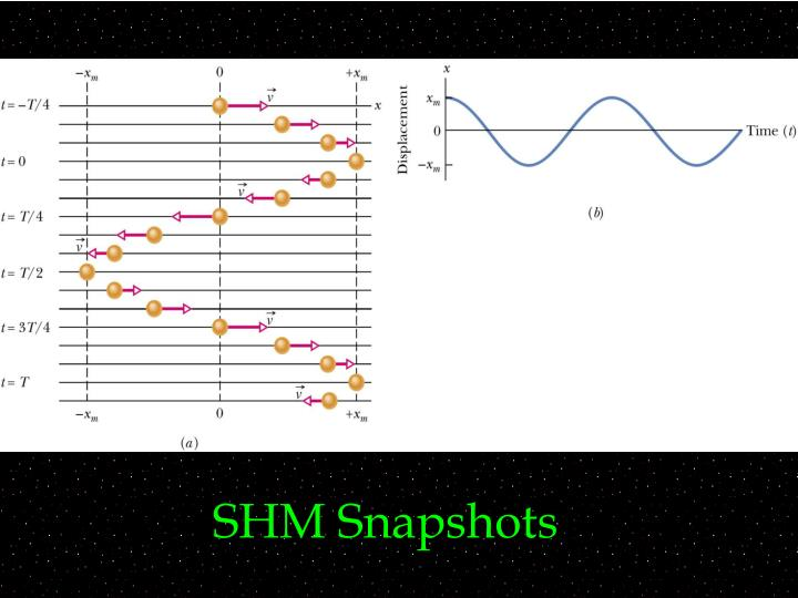 SHM Snapshots