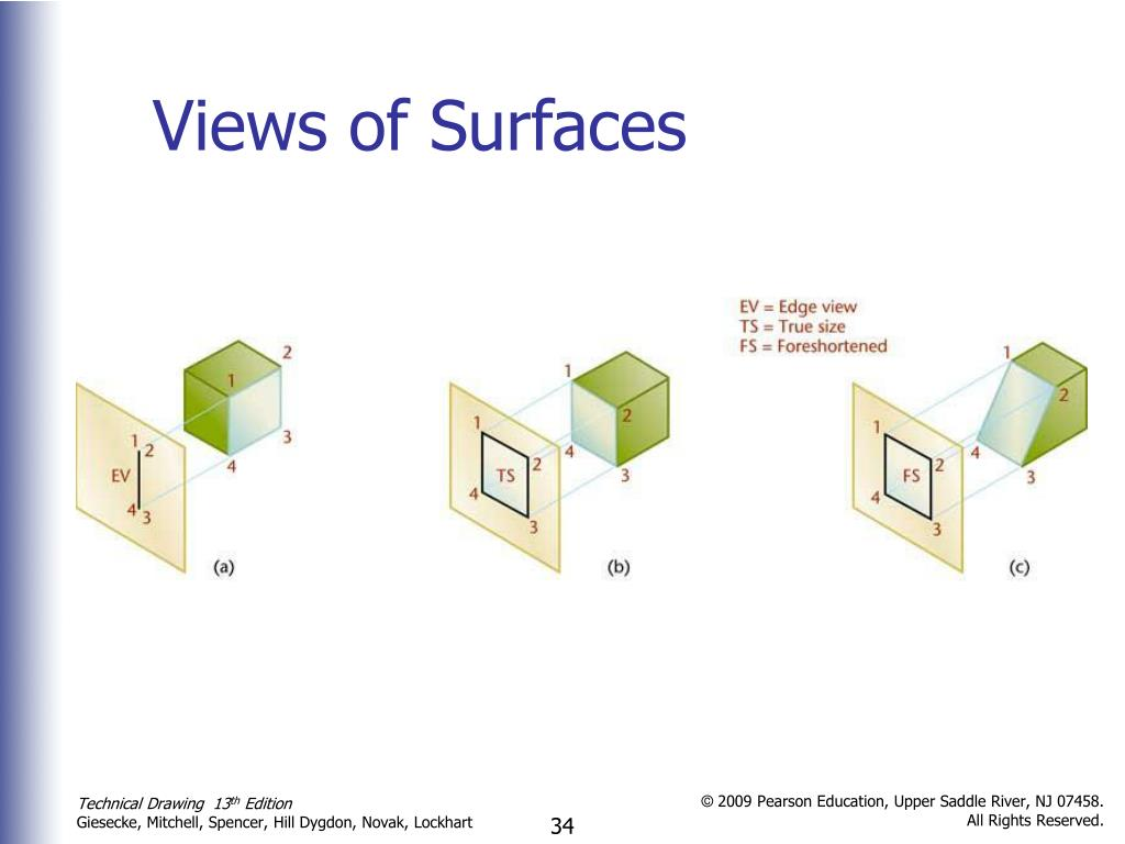 Views of Surfaces