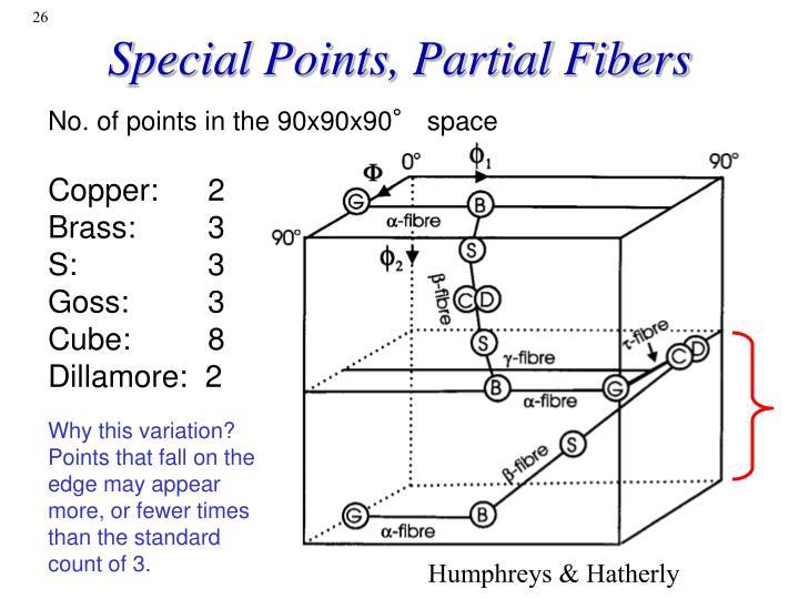Special Points, Partial Fibers