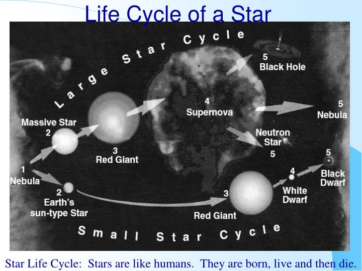 life cycle of a star n.