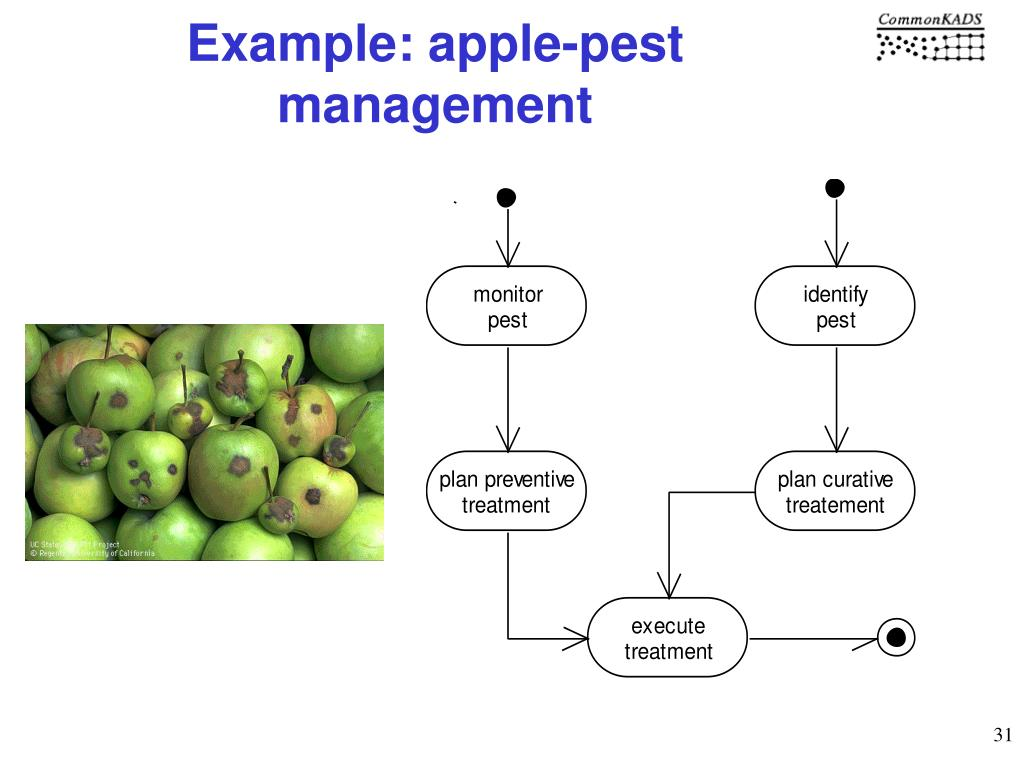 Example: apple-pest management