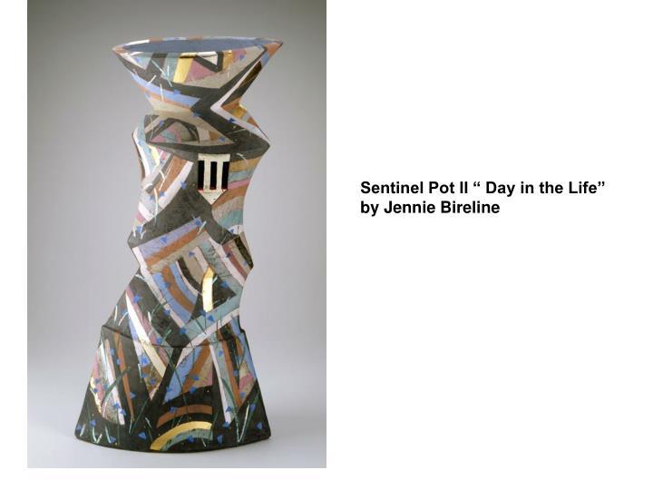 """Sentinel Pot II """" Day in the Life"""" by Jennie Bireline"""