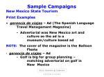 sample campaigns17