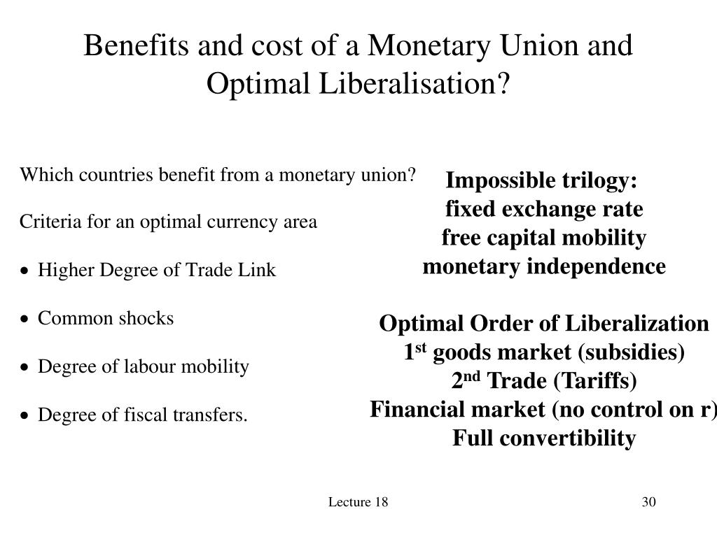 Benefits and cost of a Monetary Union and Optimal Liberalisation?