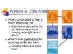 watson little albert