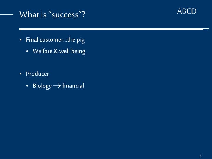 "What is ""success""?"