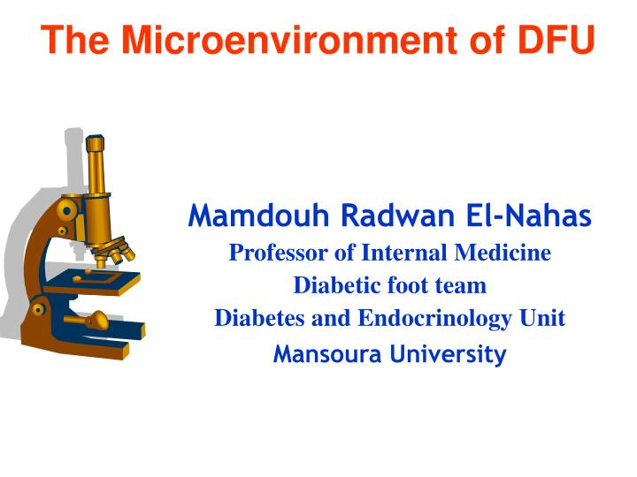 The microenvironment of dfu