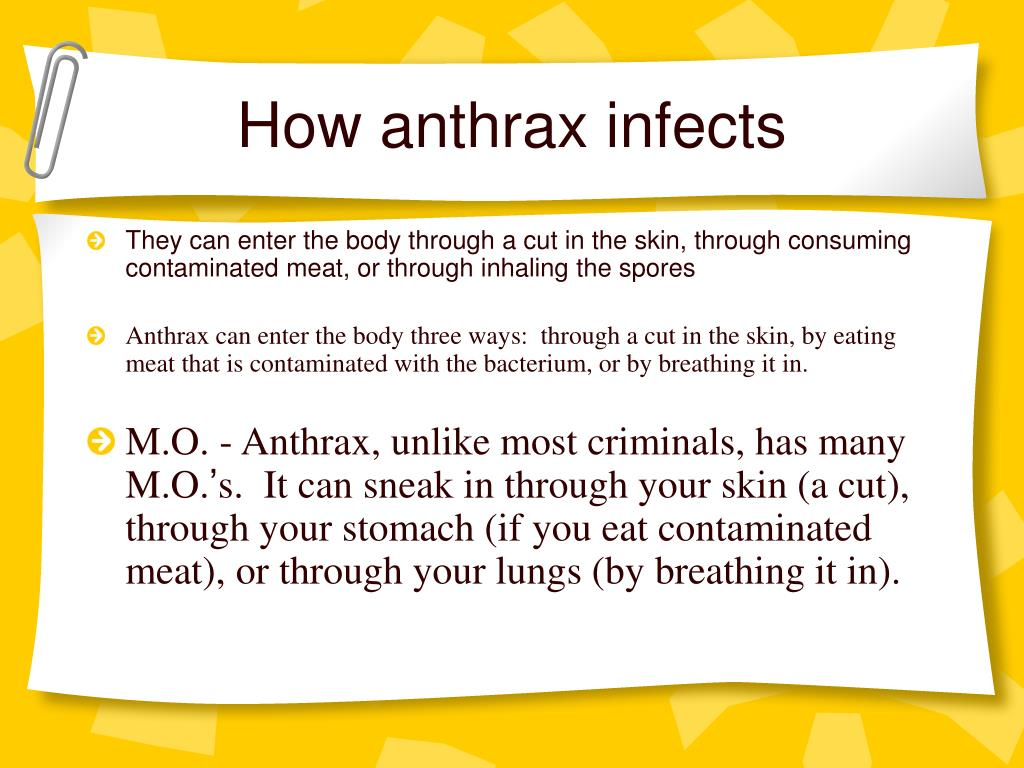 How anthrax infects