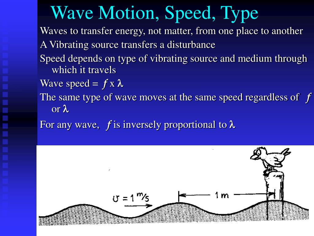Wave Motion, Speed, Type
