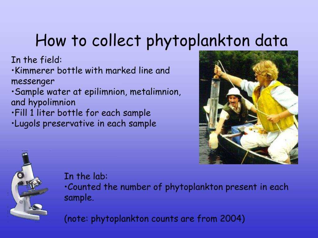 How to collect phytoplankton data