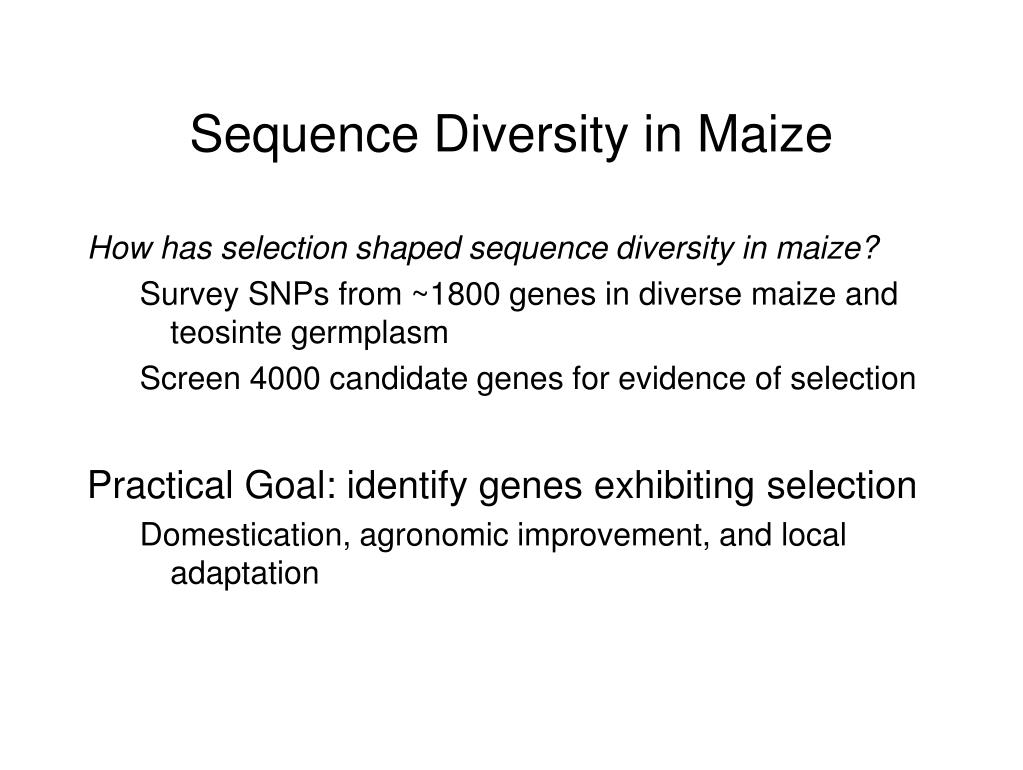 Sequence Diversity in Maize