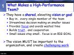 what makes a high performance team