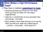what makes a high performance team10