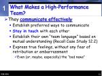 what makes a high performance team13