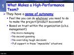 what makes a high performance team14