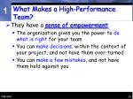 what makes a high performance team15