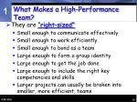 what makes a high performance team16