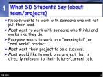 what sd students say about team projects