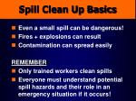 spill clean up basics