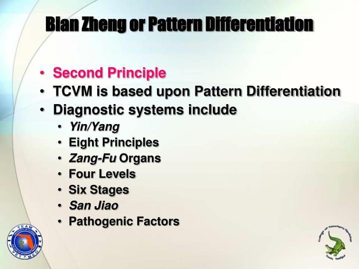 Bian Zheng or Pattern Differentiation