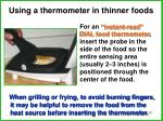 using a thermometer in thinner foods1