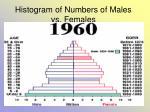 histogram of numbers of males vs females33