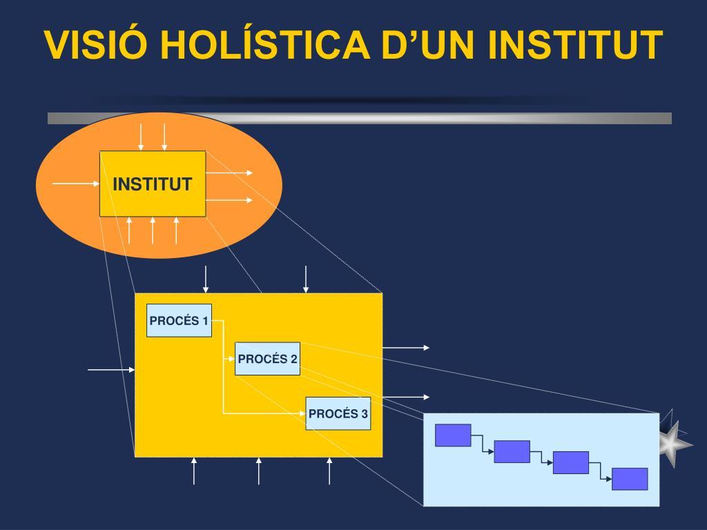 VISIÓ HOLÍSTICA D'UN INSTITUT