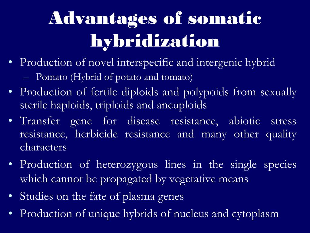 Advantages of somatic hybridization