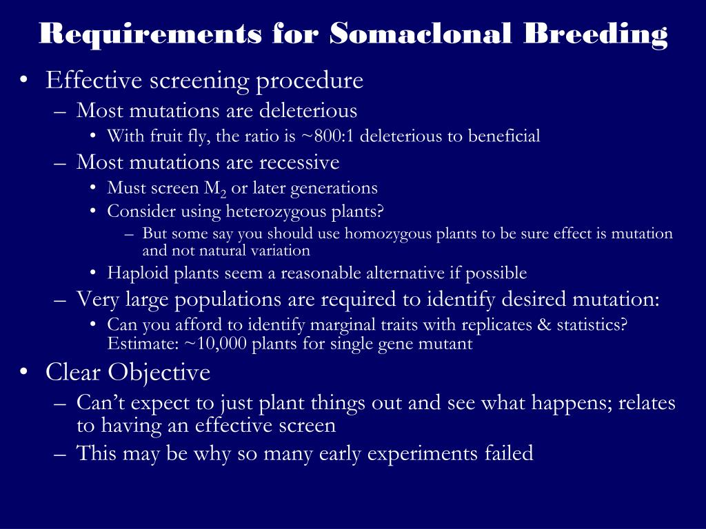 Requirements for Somaclonal Breeding