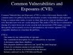 common vulnerabilities and exposures cve