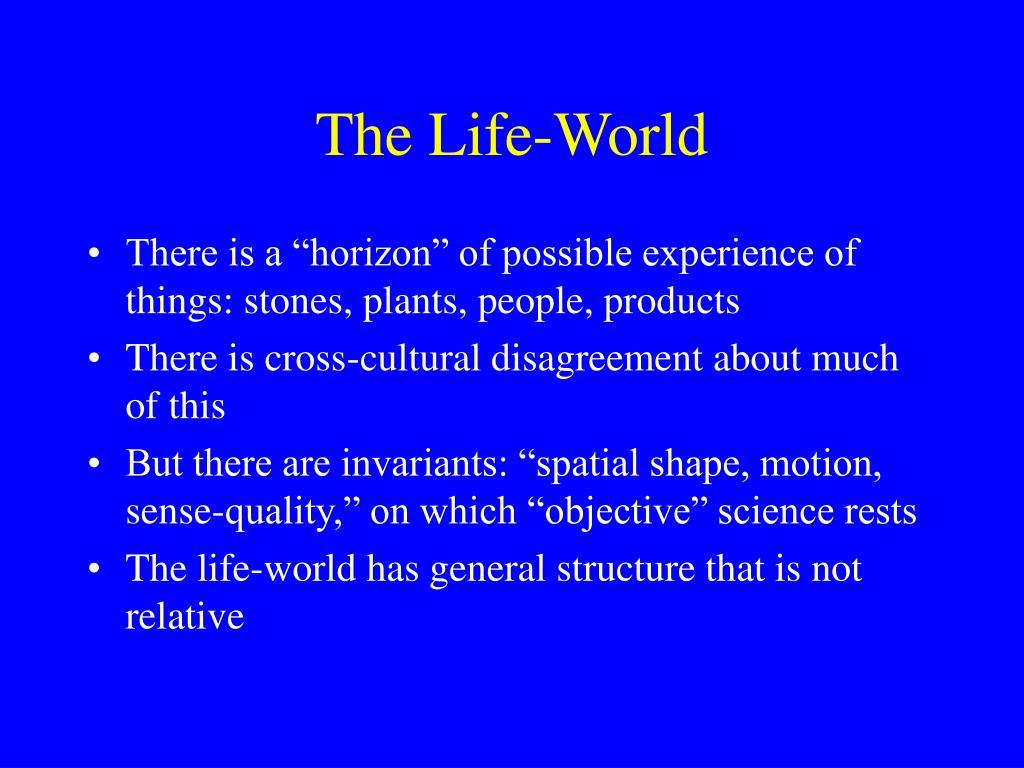 The Life-World