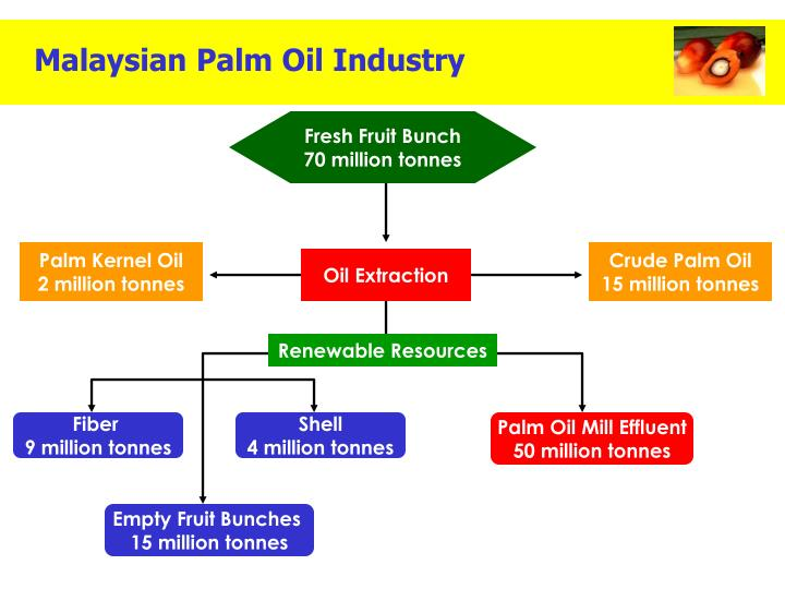 top report malaysia palm oil industry outlook Palm oil production for the period of october to december 2015 and january 2016 show a huge drop of 145% from 727 million tons recorded from october to december 2014 and january 2015 to 621 million tons from october to december 2015 and january 2016.