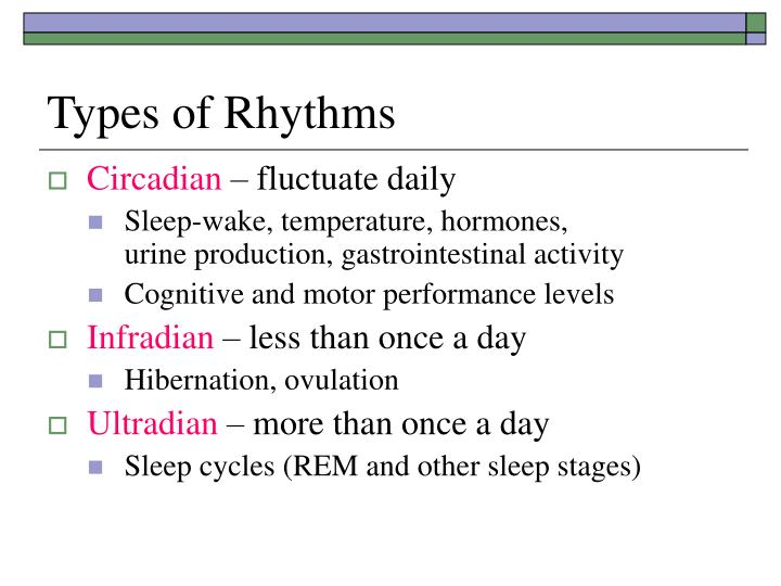 circadian rhythm essay example @example essays biological rhythms 4 pages 1064 words for example, bears know they must hibernate, poinsettias know they must flower and humans know they need sleep a circadian rhythm is a rhythm which repeats itself every 24 hours, whilst, the infradian and ultradian rhythms.