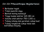 ciri ciri pthecanthropus mojokertensis