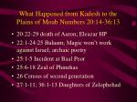 what happened from kadesh to the plains of moab numbers 20 14 36 13