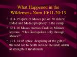 what happened in the wilderness num 10 11 20 13