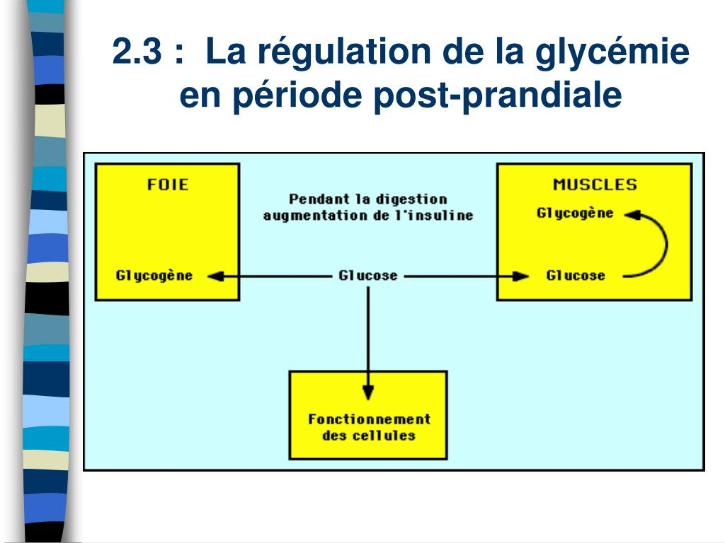 PPT - LE DIABETE PowerPoint Presentation, free download..