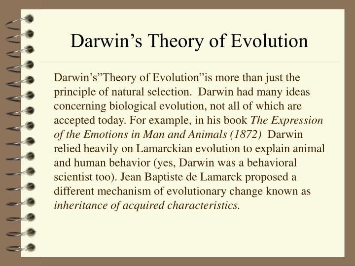 religious beliefs should not be used to dispute biological evolution theories A second belief is that, unless otherwise indicated, biblical passages should be interpreted literally thus, when the genesis creation story or stories state that god created the world in six days, it is normally interpreted to mean six literal, 24 hour, days.