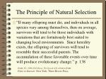the principle of natural selection