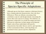 the principle of species specific adaptations
