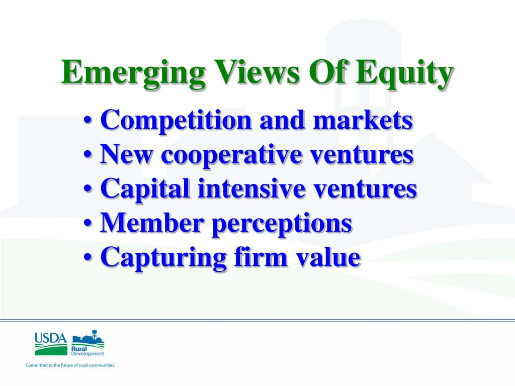 Emerging Views Of Equity