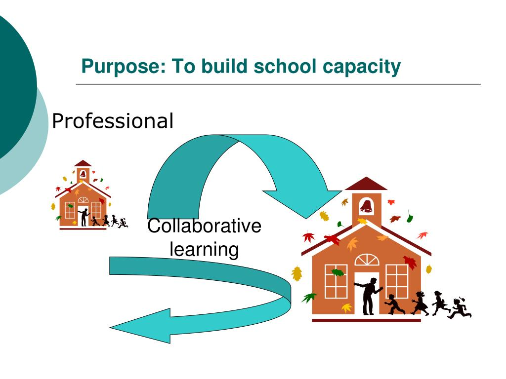Purpose: To build school capacity