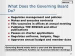 what does the governing board do
